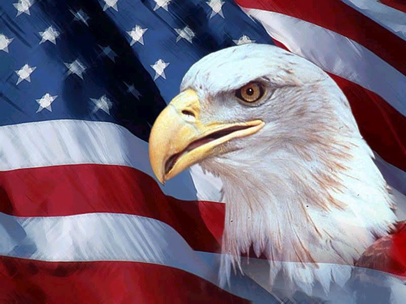 American_-Flag-eagle