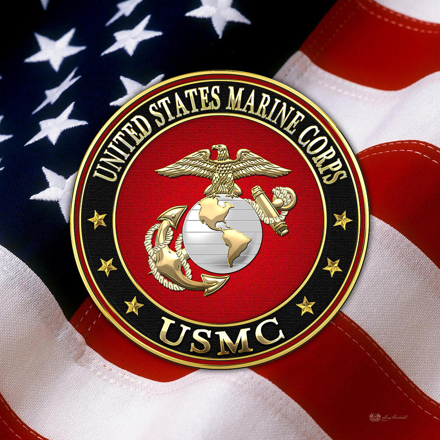 usmc-eagle-globe-and-anchor-ega-over-american-flag-serge-averbukh